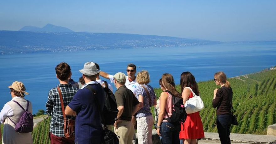Swiss Riviera Wine Tours (Guides)