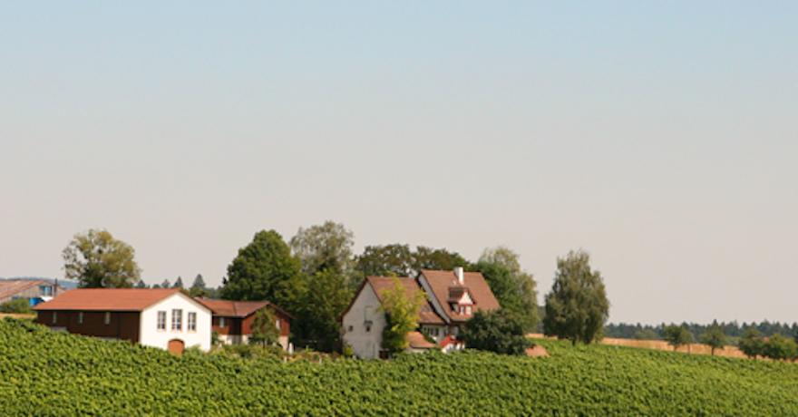 Weingut Familie Zahner