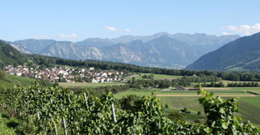 Weingut Bovel
