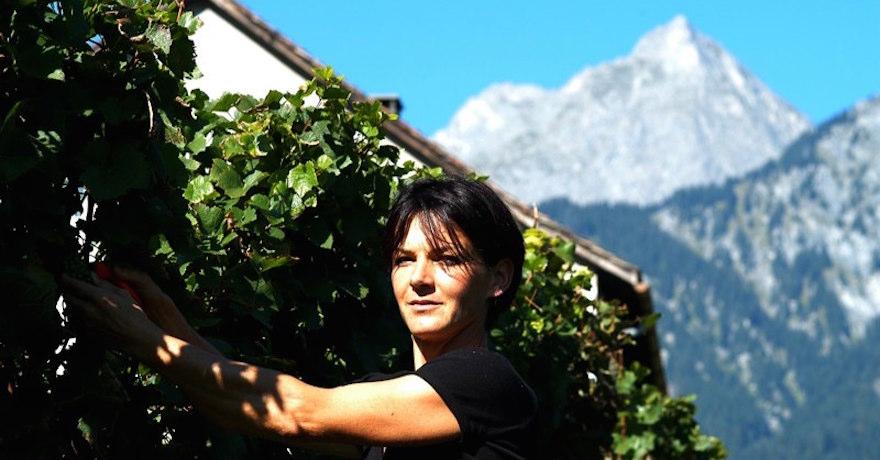 Eichholz Weingut