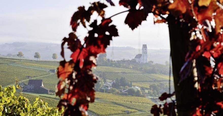 Weingut Baumann