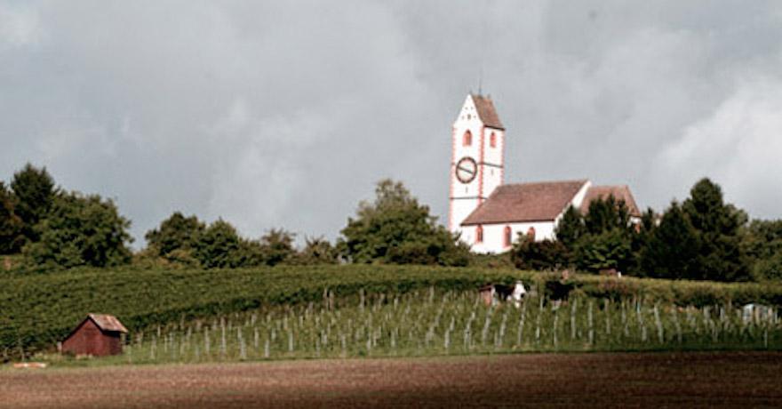 Ruch, Markus - Weinbau